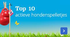 Top 10 actieve hondenspelletjes