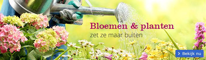Bloemen & planten zet ze maar buiten