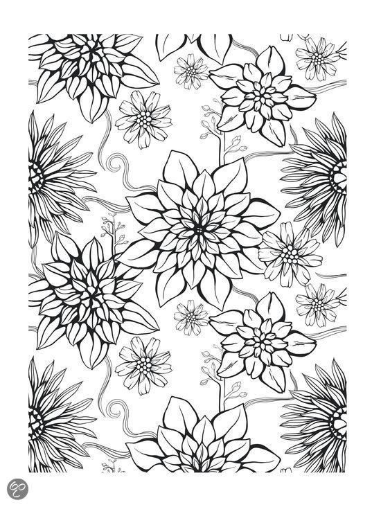 Kleurplaten Voor Volwassenen Met Bloemen.Kleurplaten Bloemen Voor Volwassenen Omj67 Agneswamu