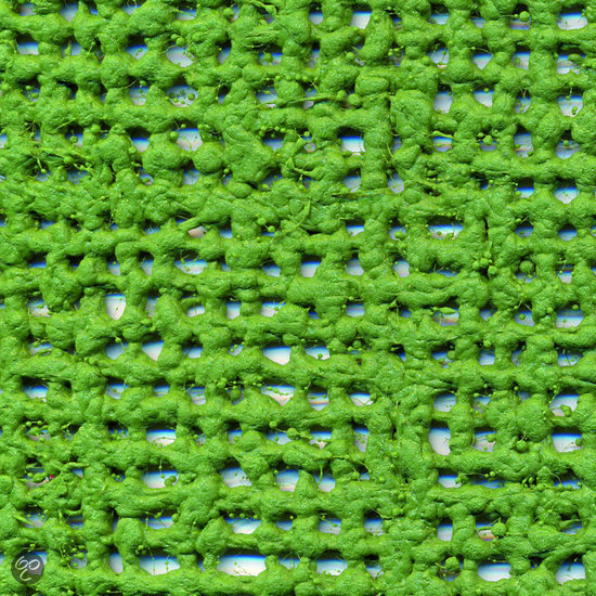 Aerotex Tenttapijt - 2.5x4 meter - Groen