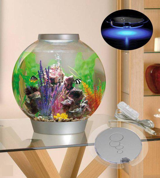 Biorb intelligent led aquarium 30 liter zilver for Grand aquarium rond