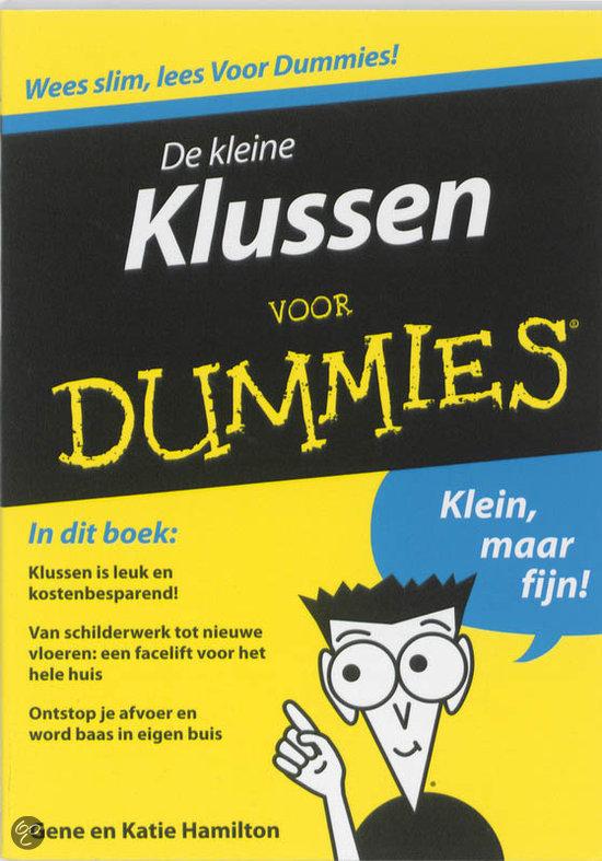 Voor Dummies - De kleine klussen voor Dummies