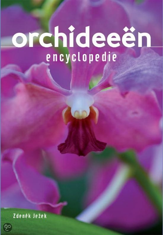 Geillustreerde Orchideeen encyclopedie