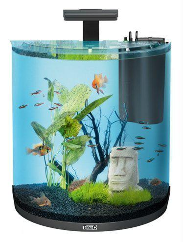tetra aqua art explorer line aquarium 60 liter zwart. Black Bedroom Furniture Sets. Home Design Ideas