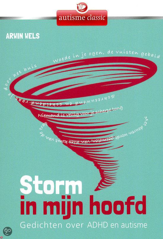 Storm in mijn hoofd