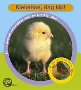 Kiekeboe, Dag Kip!