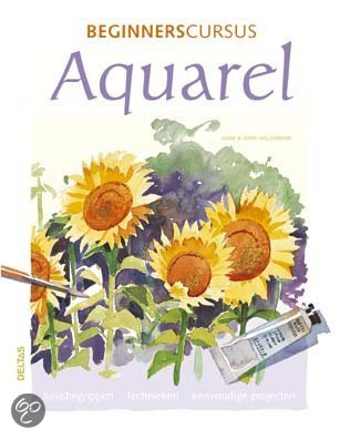 Beginnerscursus Aquarel