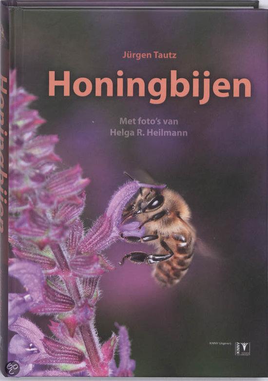 Honingbijen
