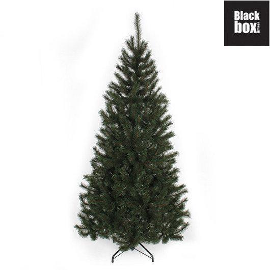 black box trees kerstboom kingston h215d117 groen tips 767. Black Bedroom Furniture Sets. Home Design Ideas