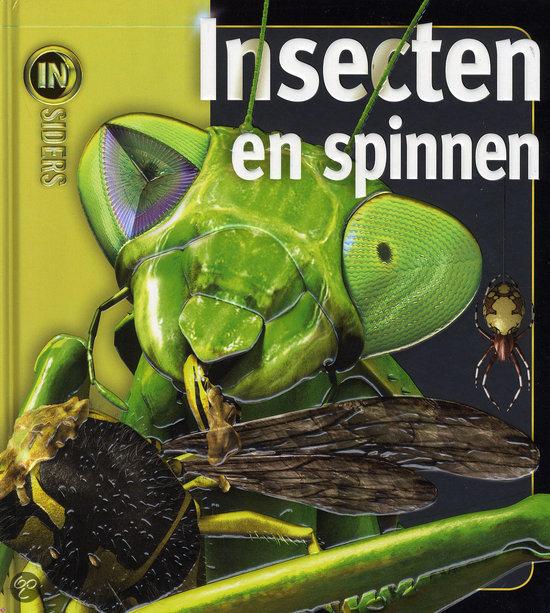 Insecten en spinnen