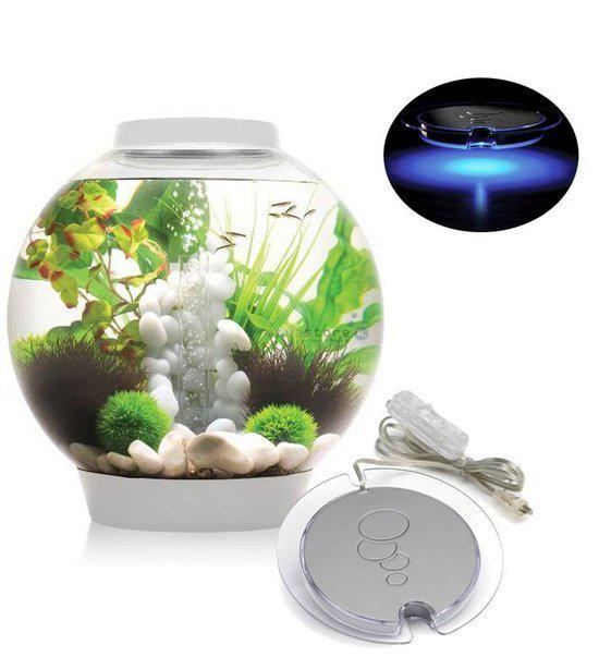 bol com   biOrb Intelligent LED   Aquarium   60 liter   Wit