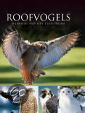 Roofvogels
