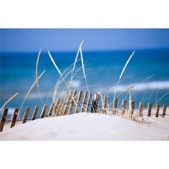 Woonexpress buitenschilderij canvas zeeduin blauw for Schilderij buiten intratuin