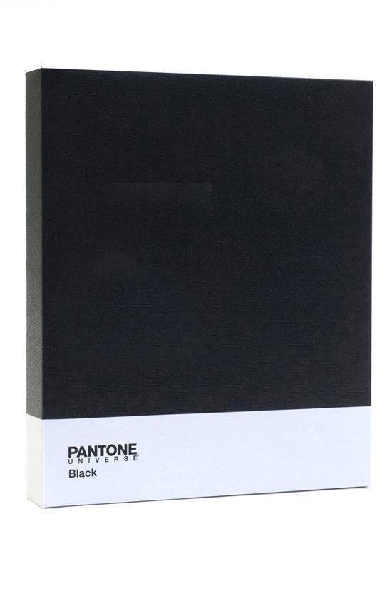 Pantone art schilderij classic 30 x 25 cm zwart - Kleur schilderij gang ...