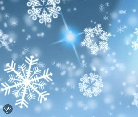 bol.com | Sneeuwvlokken raamsjabloon