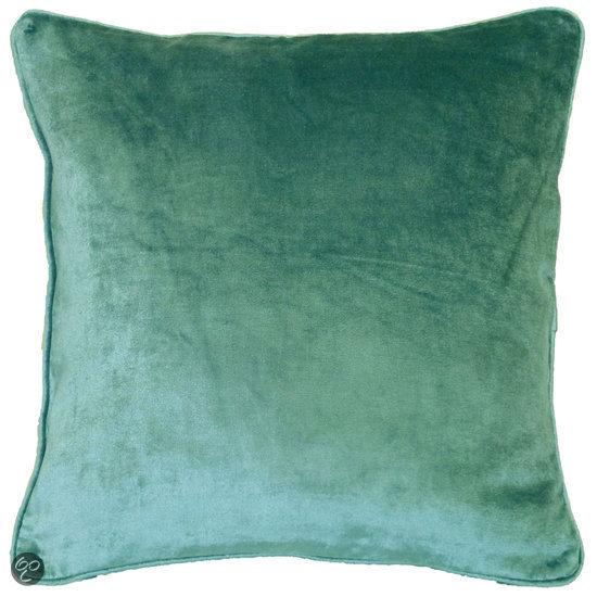 bolcom dutch decor fluweel sierkussen 45x45 cm groen