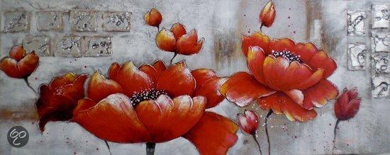 Schilderij schilderij rode for Outdoor schilderijen intratuin
