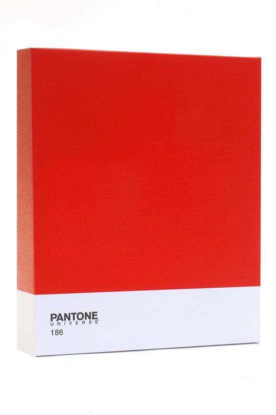Pantone art schilderij classic 30 x 25 cm rood - Kleur schilderij gang ...
