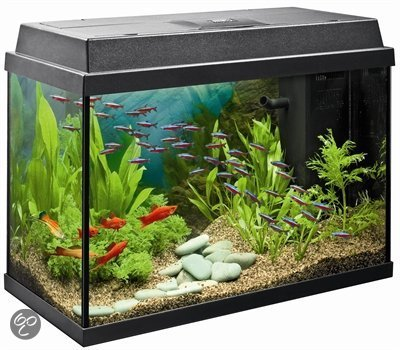 juwel rekord aquarium 70 liter zwart. Black Bedroom Furniture Sets. Home Design Ideas