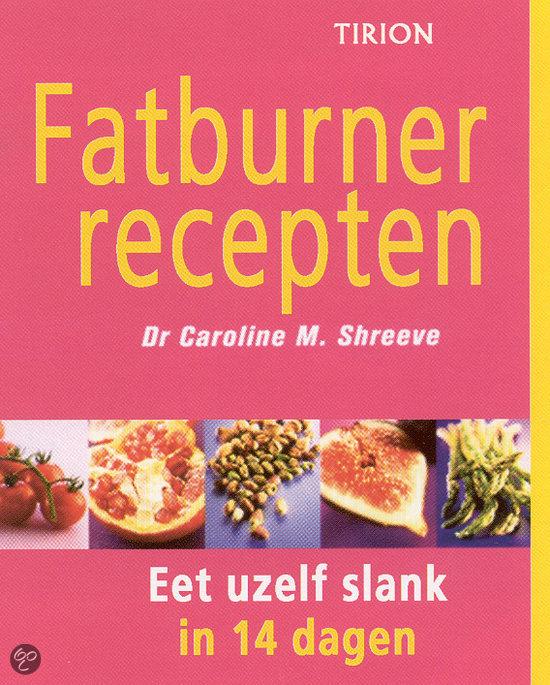 Fatburner Recepten