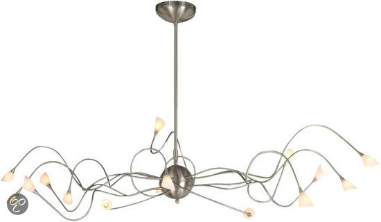 bol.com | WL Octopus - Hanglamp - 12 lichts - RVS
