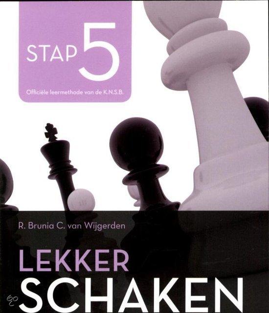 Lekker schaken stap / 5 strategie/koningsaanval/eindspel