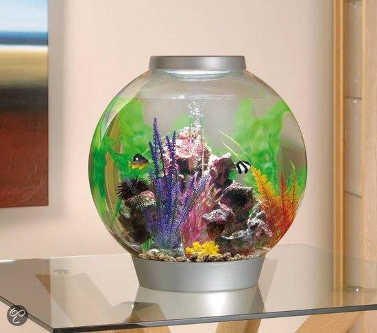 biorb standard led aquarium 60 liter. Black Bedroom Furniture Sets. Home Design Ideas
