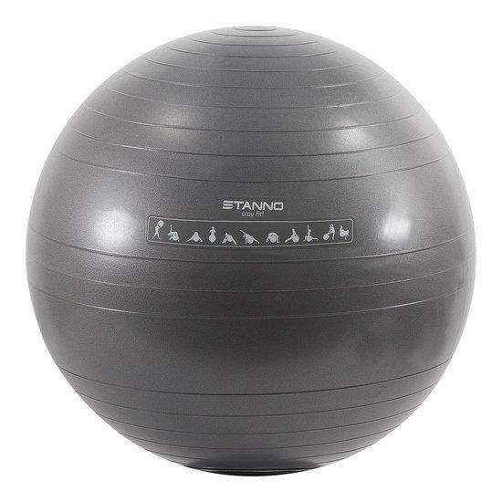 Stanno Fitnessbal / Exercise Ball - Ø 65 cm - Grijs