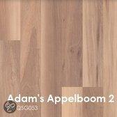 Quickstep Creo Adam´s Appelboom 2 Strip QSG053