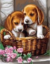 Schilderen op Nummer - Puppy