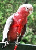 Happybird vogeltuigje - Small