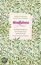 Mindfulness. Een praktische gids om rust te vinden in een hectische wereld