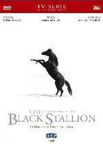 Black Stallion, The (3DVD)