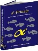 A3 - Prinzip