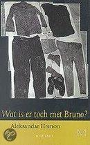 Wat Is Er Toch Met Bruno?
