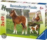 Ravensburger ponyvriendschap puzzels