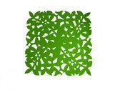 Make My Day Placemat - 31.5 x 31.5 cm -  Groen