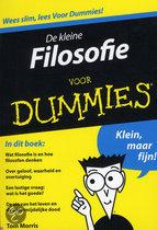 Voor Dummies - De kleine Filosofie voor Dummies