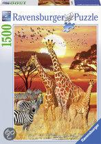 Ravensburger Zonsondergang in Afrika - Puzzel