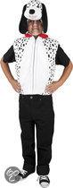 Pluche Dalmatier - Kostuum - 5-7 jaar