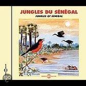 Sounds of Nature: Jungles of Senegal