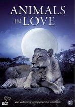 Animals In Love Dierendag Editie