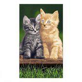 Strandlaken Kittens - 100x180 cm