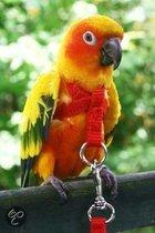 Happybird Vogeltuigje - Klein
