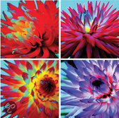 Arthouse Canvas Hyper Real Dahlias - Set van 4