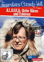 Feuerstein In Alaska