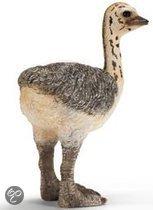 Schleich Struisvogeljong Miniatuur