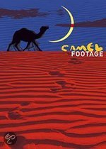 Camel Footage 1