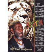 Lee Perry - Live