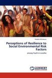 Perceptions of Resilience to Social Environmental Risk Factors